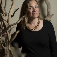 Preview of Tracy Chevalier
