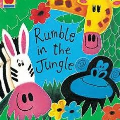 Colourful book sleeve for Rumble in The Jungle